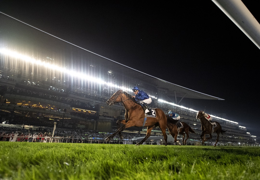 Dubai World Cup Carnival Preview – Week 8 Tips