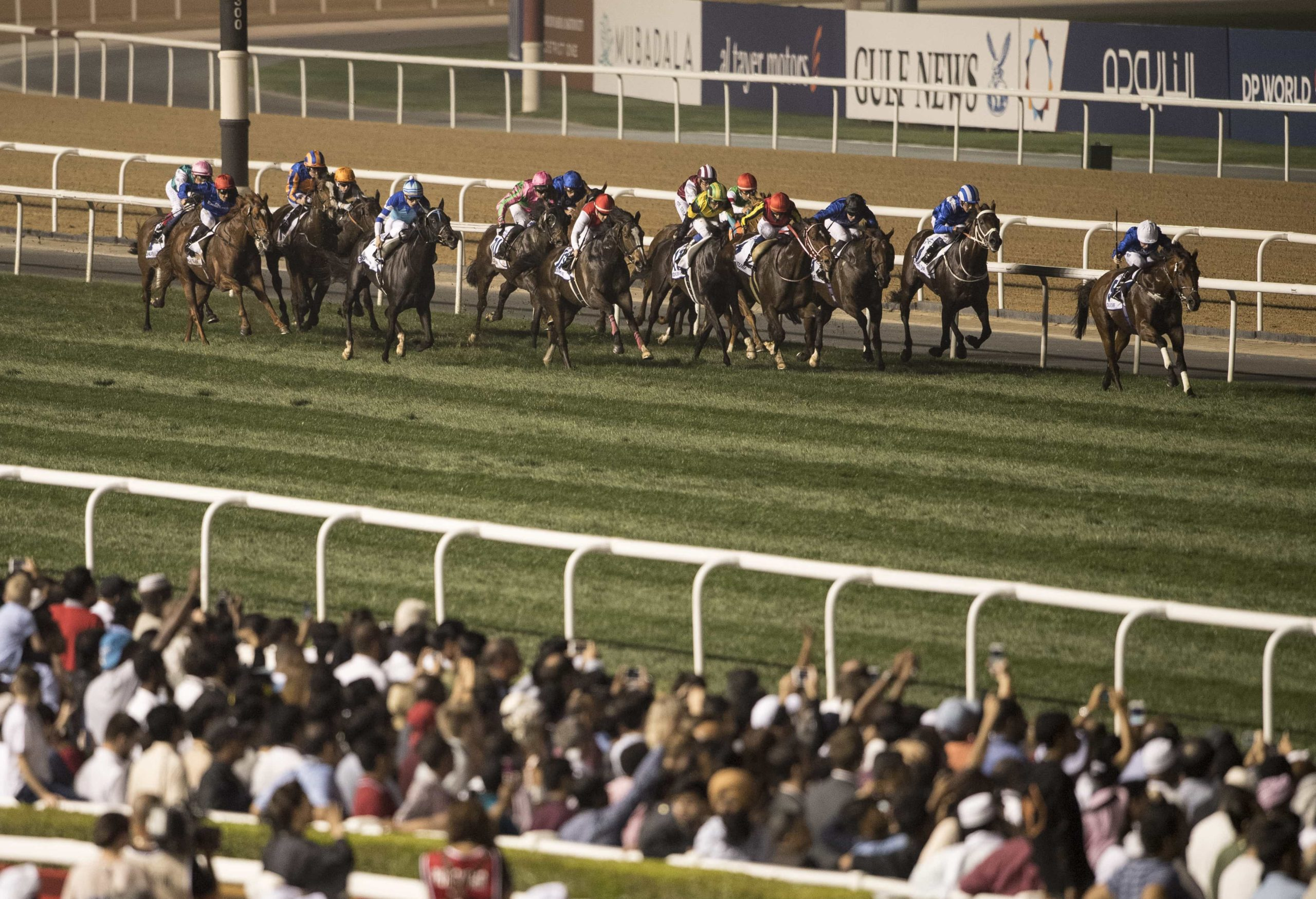 Dubai World Cup Carnival Preview – Super Saturday Tips