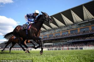 Charities are on a winner at Royal Ascot