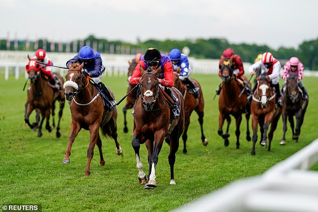 The Queen tunes in to watch her horse Tactical win the Windsor Castle Stakes at Royal Ascot