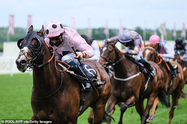 Chiefofchiefs triumphs at Ascot but trainer Fellowes brands it 'worst training performance all week