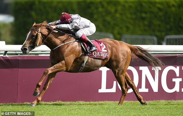 Horseracing in France set to be one of first sports to return in the country post-lockdown