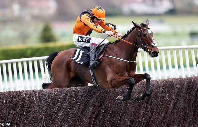 Aidan Coleman and Brendan Powell Jnr keep fit during lockdown by training thoroughbreds
