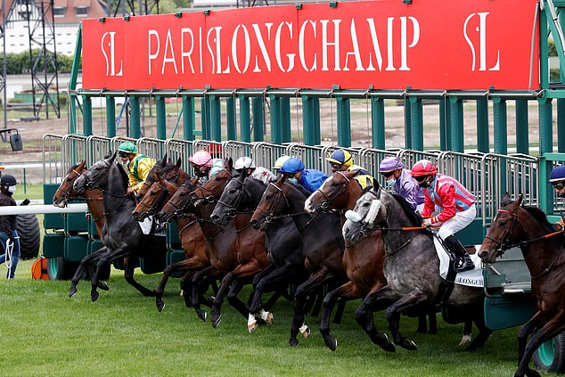 French racing preview: Auteuil stages a terrific nine-race jumps fixture