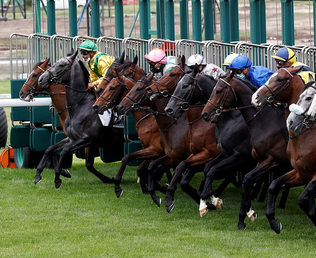 FRENCH RACING TIPS: All the best bets for Monday's meeting at Chateaubriant