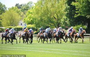 FRENCH RACING TIPS: All the best bets for Saturday's racing at Clairefontaine