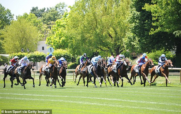 FRENCH RACING TIPS: All the best bets for Sunday's racing at Deauville
