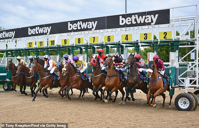 Robin Goodfellow's racing tips: Best bets for Wednesday, June 3