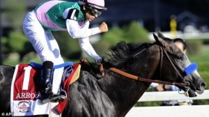 Arrogate, twice crowned the world's best racehorse, dies aged 7 after mystery illness