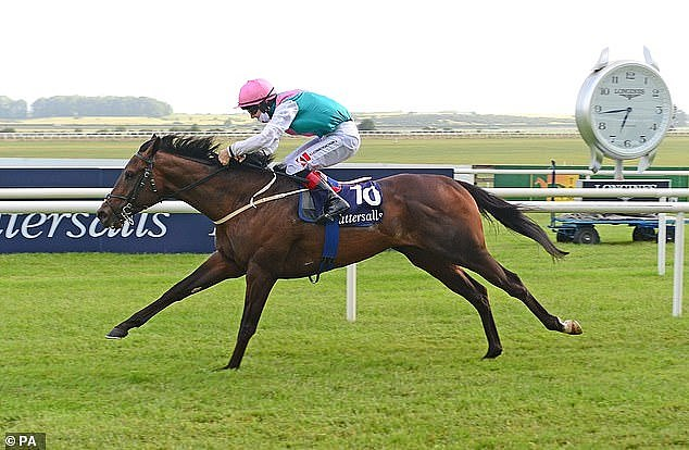 Lyons says Irish 2,000 Guineas winner Siskin must improve against 'scary' rivals in Sussex Stakes