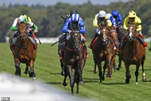 Trainer Marcus Tregoning has high hopes for Mohaather in the Sussex Stakes at Goodwood