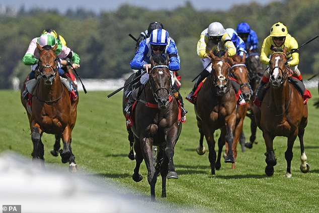 Trainer Marcus Tregoning has high hopes for Mohaather in the Sussex Stakesat Goodwood