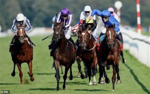 Doncaster seeks to become the next pilot for crowd trial at next month's St Leger meeting