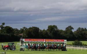 300-1 shot He Knows No Fear makes horse racing history at Leopardstown