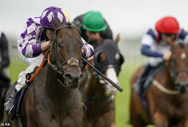 Robin Goodfellow's racing tips: Best bets for Thursday, August 20