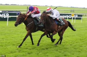 Robin Goodfellow's Racing Tips: Best bets for Saturday, August 29