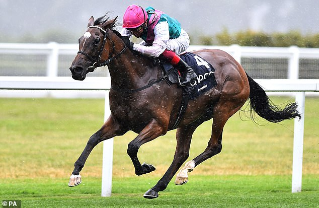 Enable made favourite in September Stakes as John Godsen confirms Logician will miss Kempton clash