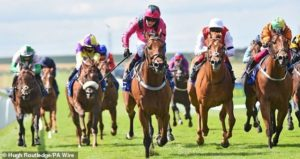 Roger Teal withdraws stable star Oxted from Betfair Sprint Cup following unsatisfactory workout