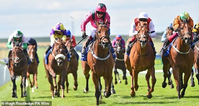 Roger Teal withdraws stable star Oxted fromBetfair Sprint Cup following unsatisfactory workout