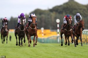 Robin Goodfellow's Racing Tips: Best bets for Friday, September 4