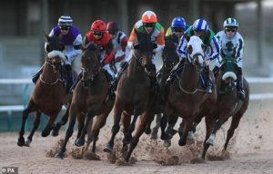 Fear over the future of jump racing at Southwell due to two fatalities
