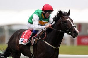 William Muir dreaming of Classic glory with unfashionable Pyledriver in the St Leger