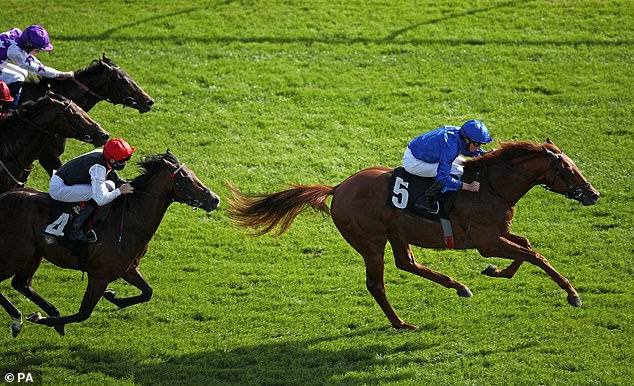 Yibir continues to impress with tenacious front-running victory at Newbury