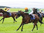 Robin Goodfellow's Racing Tips: Best bets for Saturday, October 17