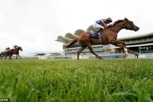 Aidan OBrien's Love to miss Arc showdown with Enable due to predicted soft ground