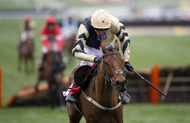 Paul Nicholls andRuby Walsh back shake-up at Cheltenham Festival to make way for a new mares' chase