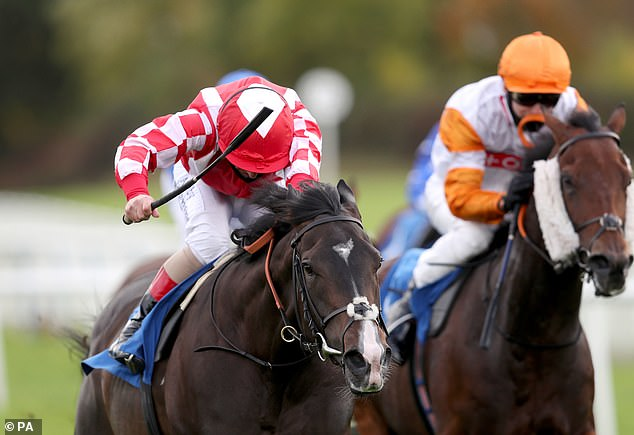 Robin Goodfellow's racing tips for Tuesday, October 13