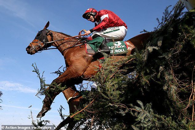Double Grand National Winner Tiger Roll could make seasonal debut at Down Royal on October 31