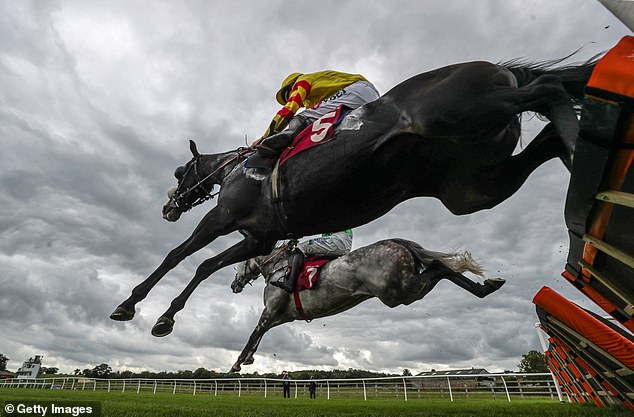 Robin Goodfellow's Racing Tips: Best bets for Wednesday, October 28