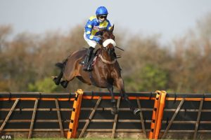 PETER SCUDAMORE: Cobden in pole position to win the jump jockeys' title for the first time