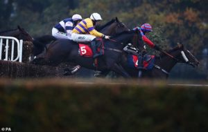 Robin Goodfellow's Racing Tips: Best bets for Monday, November 9