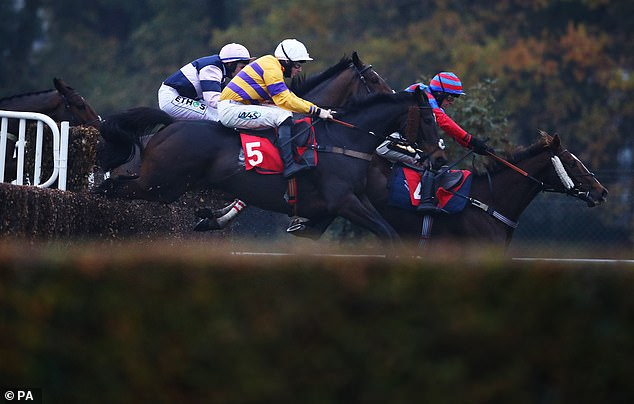 Robin Goodfellow's Racing Tips: Best bets for Friday, November 13