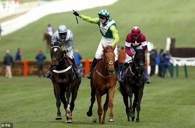 Gold Cup hopeful Topofthegame ruled out for season with tendon injury