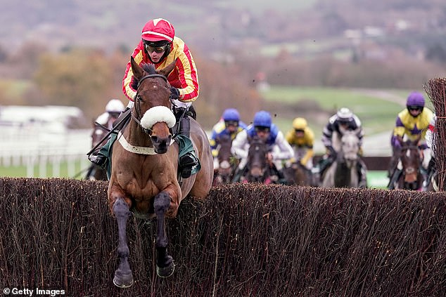 Coole Cody produces red-hot performance to win Cheltenham's Paddy Power Gold Cup