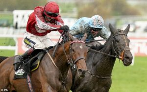 Robin Goodfellow's Racing Tips: Best bets for Monday, November 16