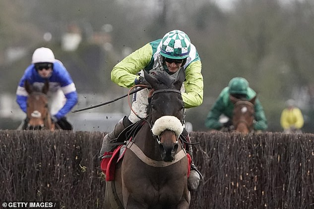 Trainer Paul Nicholls has high hopes for Clan Des Obeaux in the Betfair Chase at Haydock