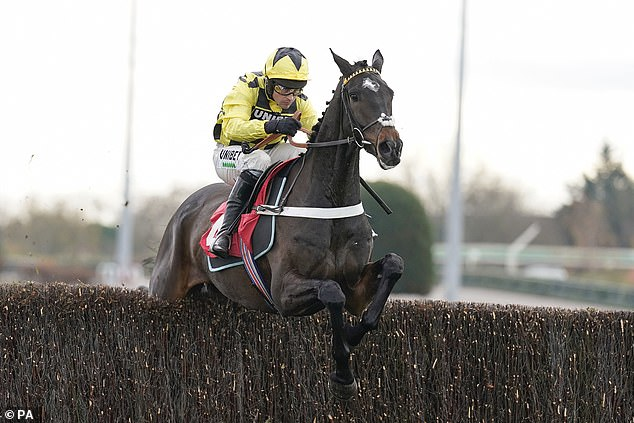 Shishkin cut for Arkle Novices' Chase after 23-length victory on his debut over fences at Kempton