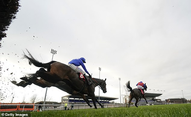 Robin Goodfellow's Racing Tips: Best bets for Thursday, November 26