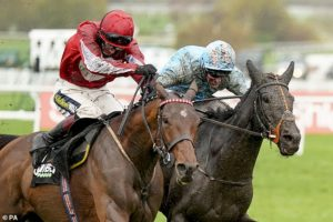 Robin Goodfellow's Racing Tips: Best bets for Saturday, November 28