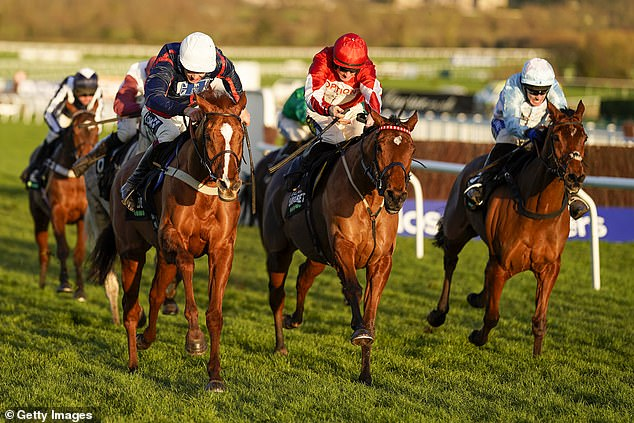 Song For Someone holds off Silver Streak to win Grade Two International Hurdle at Cheltenham