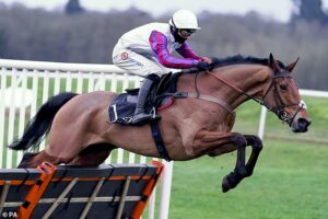 Paul Nicholls praises Bravemansgame after easy win at the MansionBet Challow Novices' Hurdle