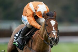 Metier lays down Supremes Novices' Hurdle marker with impressive 12 length Tolworth victory