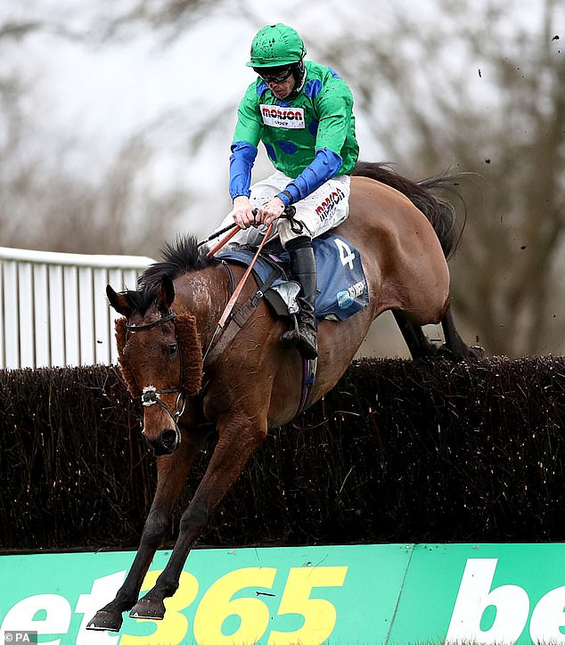 Truckers Lodge a hot tip to go one better than last year and win the Coral Welsh National